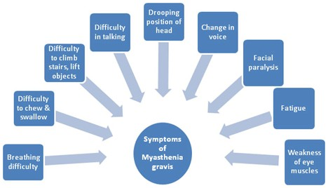 Symptoms of Myasthenia-Gravis (MG)