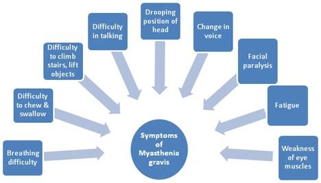 Symptoms of Myasthenia-Gravis (MG)